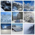Winterwunderland_Collage