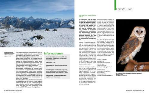 Seite3