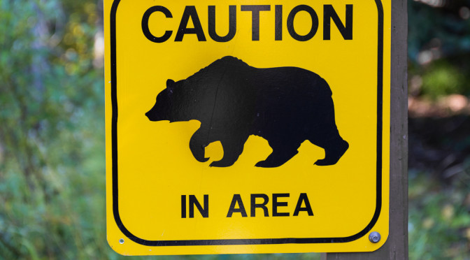 You are in bear country!